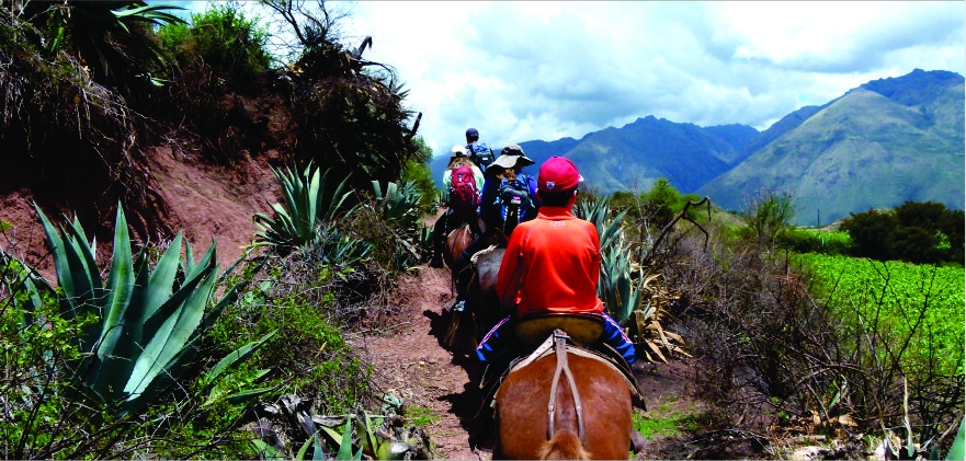 Andean Multisport