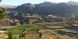 Colca Canyon - 3 days