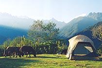 Culturas Peru Tents